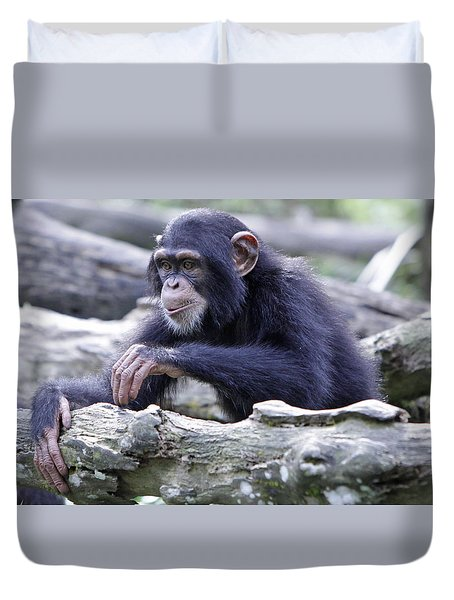 Chimpanzee Playing Duvet Cover by Shoal Hollingsworth