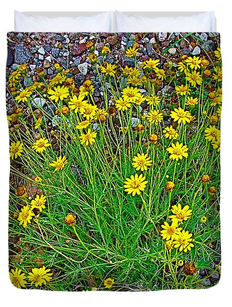 Chinchweed In Big Bend National Park-texas Duvet Cover