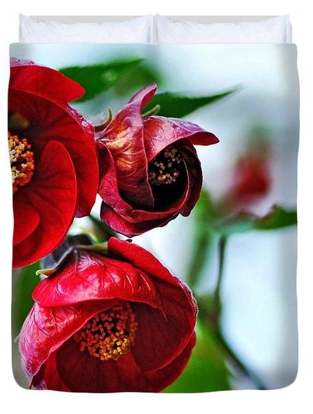 Chinese Lantern - Abutilon Duvet Cover
