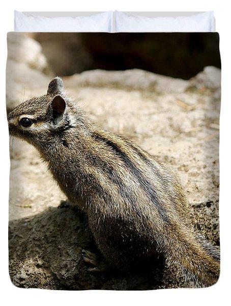 Chipmunk On A Rock Duvet Cover by Belinda Greb