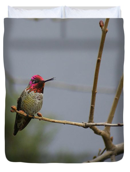 Duvet Cover featuring the photograph Chirpping Hummingbird by Debby Pueschel
