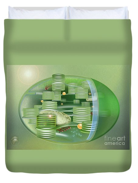 Chloroplast - Basis Of Life - Plant Cell Biology - Chloroplasts Anatomy - Chloroplasts Structure Duvet Cover