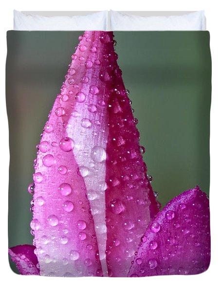 Christmas Cactus  Duvet Cover by Susan Candelario