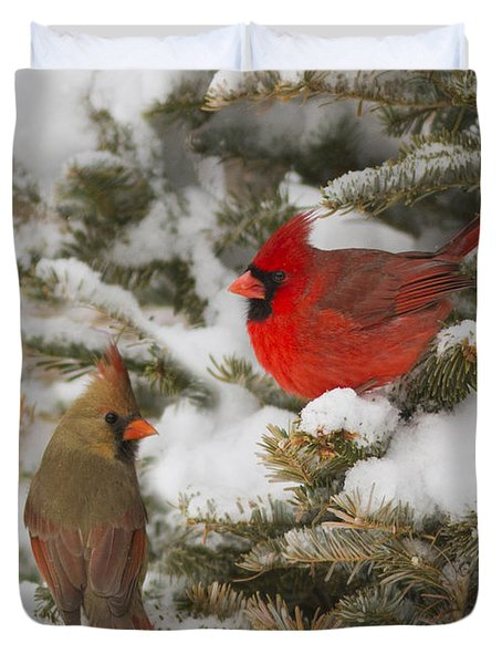 Christmas Card With Cardinals Duvet Cover