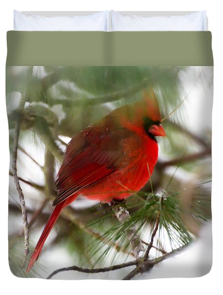 Duvet Cover featuring the photograph Christmas Cardinal by Kerri Farley