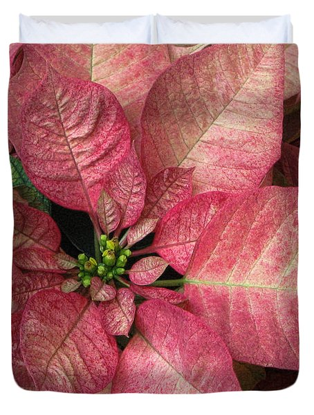 Duvet Cover featuring the photograph Christmas Flower by Tammy Espino
