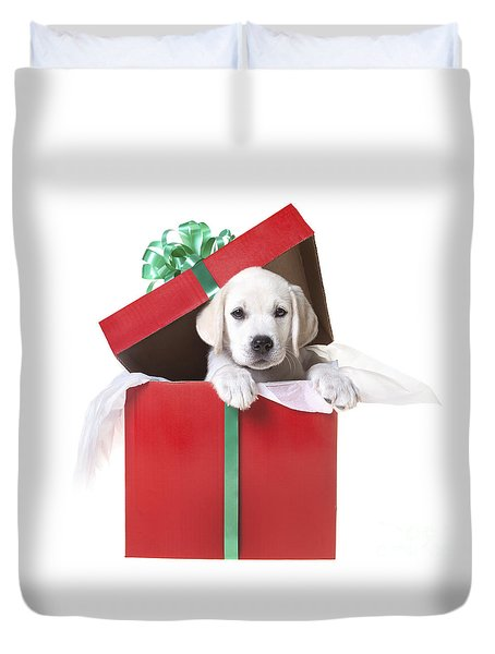 Christmas Puppy Duvet Cover by Diane Diederich