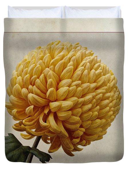 Chrysanthemum Grandiflorum Yellow Duvet Cover by John Edwards