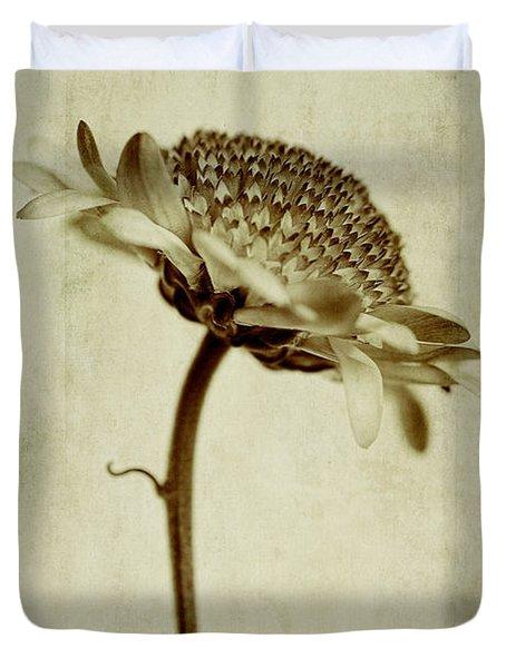 Chrysanthemum In Sepia Duvet Cover by John Edwards