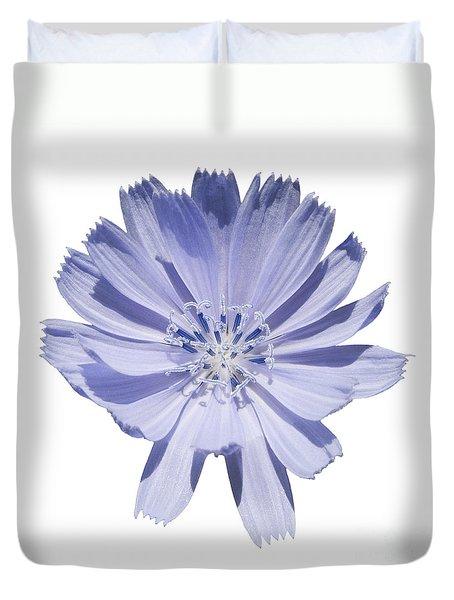 Cichorium Intybus Duvet Cover