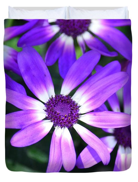 Cineraria Duvet Cover by Maria Urso