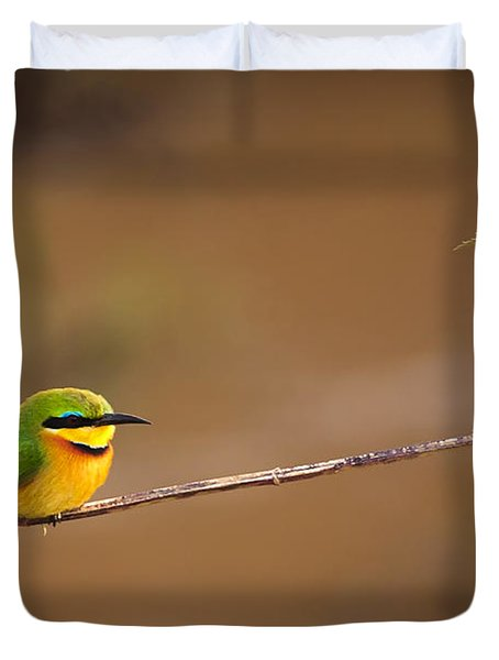 Cinnamon-chested Bee-eater Duvet Cover by Adam Romanowicz