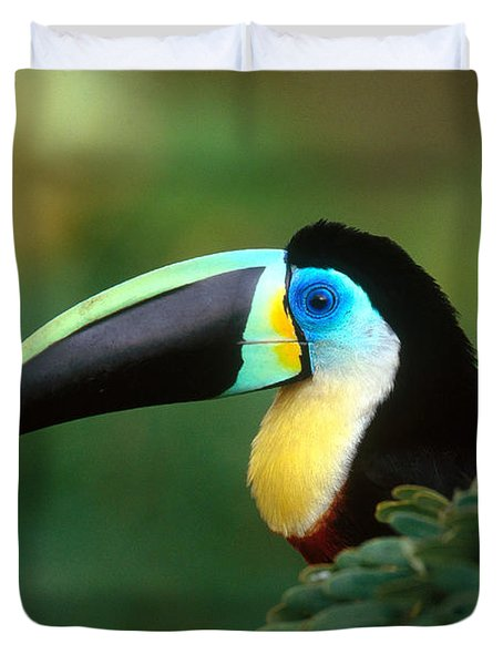 Citron-throated Toucan Duvet Cover by Art Wolfe