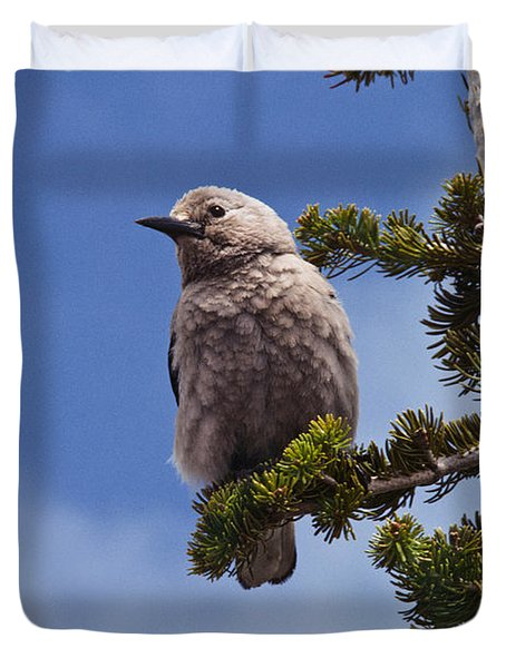 Clark's Nutcracker In A Fir Tree Duvet Cover