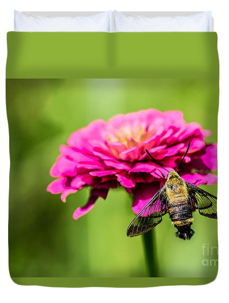 Clearwing Moth Duvet Cover by Debbie Green