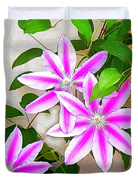 Duvet Cover featuring the photograph Clematis Trio by Shelia Kempf