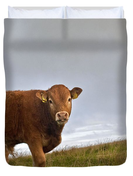 Cliffs Of Moher Brown Cow Duvet Cover