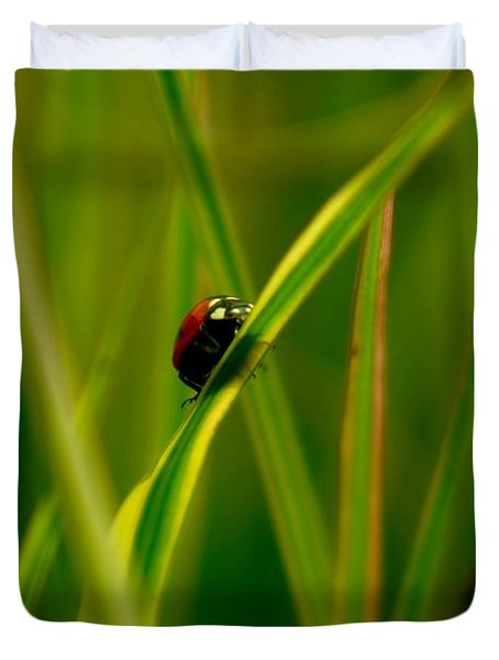 Climbing Up The Long Green Road Duvet Cover by Jeff Swan