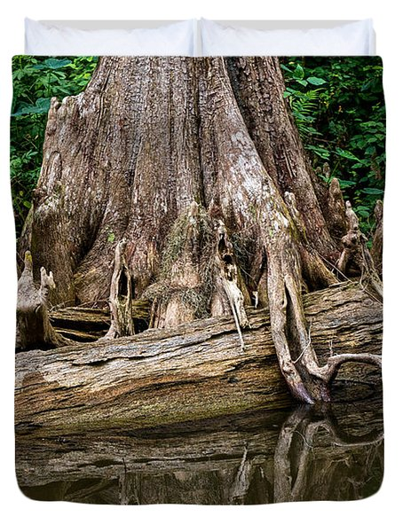 Clinging Cypress Duvet Cover by Christopher Holmes