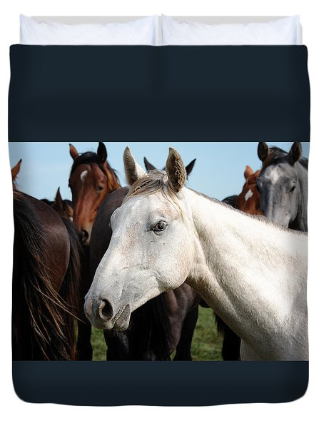 Close-up Herd Of Horses. Duvet Cover