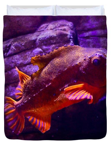 Close Up Of A Lumpfish Duvet Cover by Eti Reid