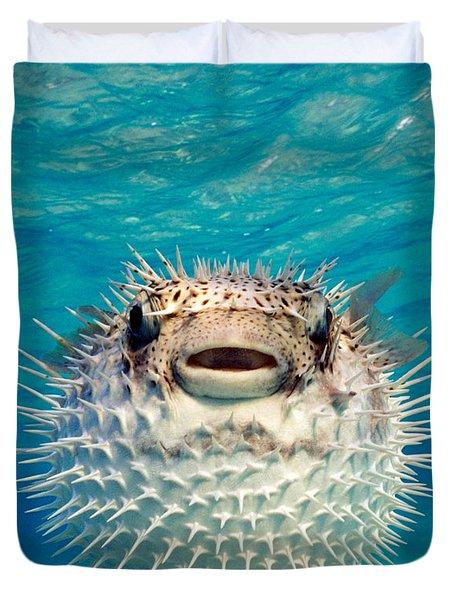 Close-up Of A Puffer Fish, Bahamas Duvet Cover