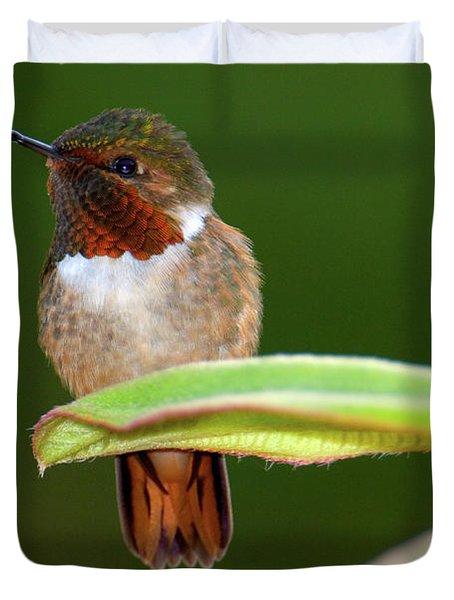 Close-up Of A Scintillant Hummingbird Duvet Cover