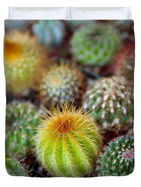 Close-up Of Multi-colored Cacti Duvet Cover
