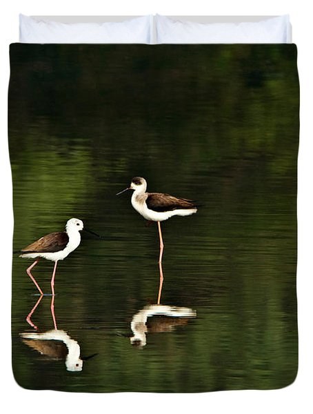 Close-up Of Two Black-winged Stilts Duvet Cover