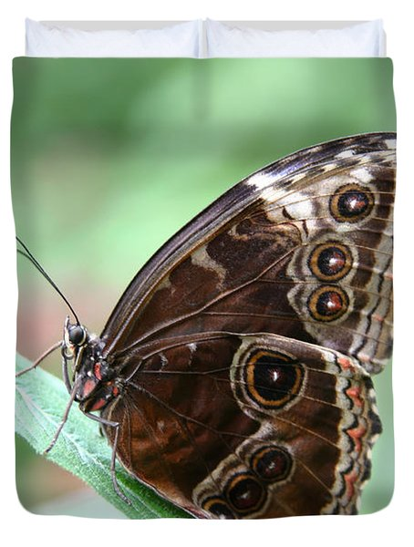 Closed Blue Morpho Duvet Cover