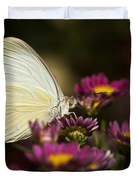 Cloudless Sulphur Butterfly  Duvet Cover by Saija  Lehtonen