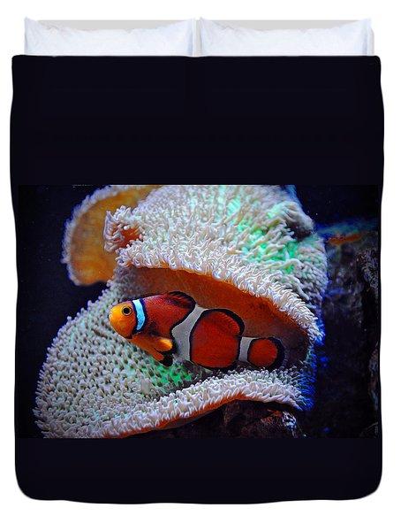 Duvet Cover featuring the photograph Clown Fish by Savannah Gibbs