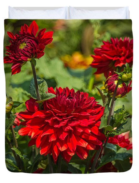 Cluster Of Dahlias Duvet Cover by Jane Luxton