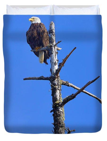 Coastal Bald Eagle Duvet Cover