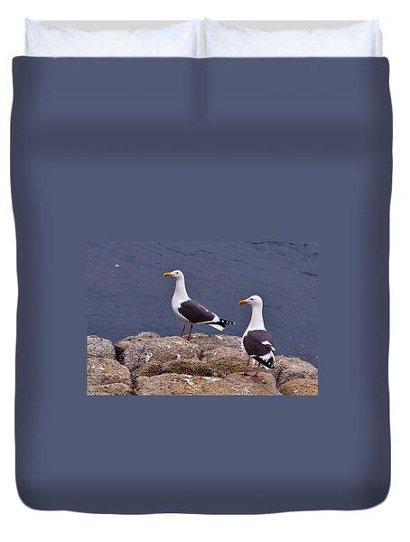 Coastal Seagulls Duvet Cover by Melinda Ledsome