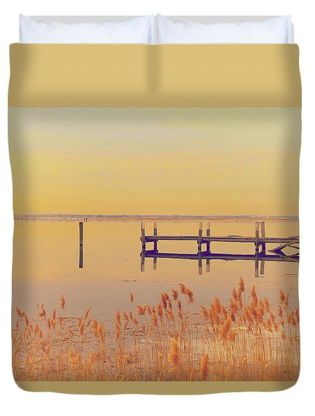 Coastal Winter Duvet Cover by Karol Livote