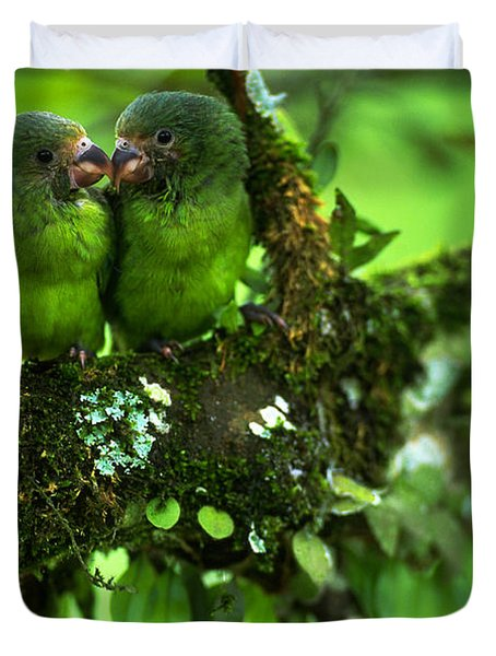 Cobalt-winged Parakeets Duvet Cover by Art Wolfe