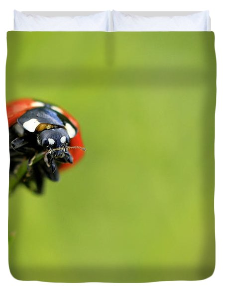 Coccinellidae  Duvet Cover