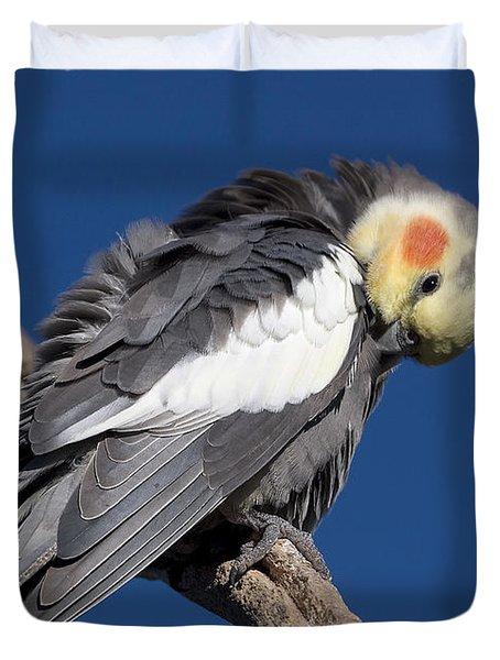 Cockatiel - Canberra - Australia Duvet Cover