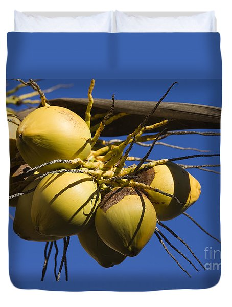 Duvet Cover featuring the photograph Coconut 1 by Teresa Zieba
