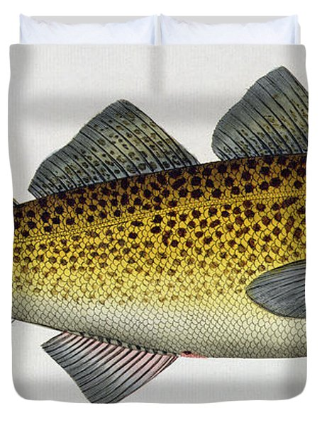 Cod Duvet Cover by Andreas Ludwig Kruger