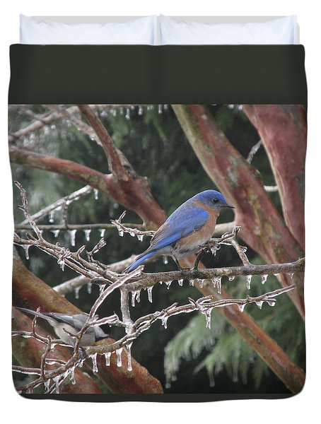 Duvet Cover featuring the photograph Cold And Blue by Marilyn Zalatan