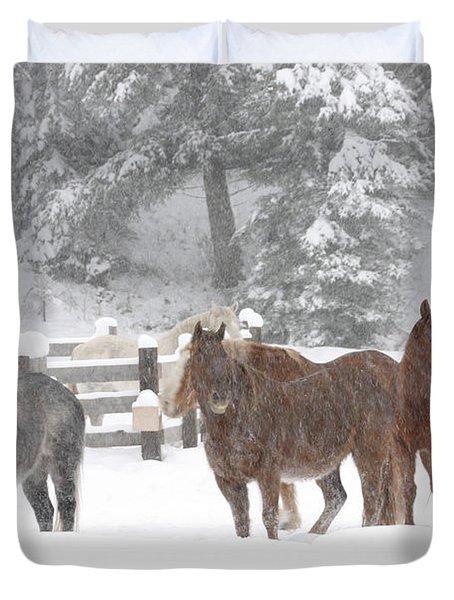 Cold Ponnies Duvet Cover