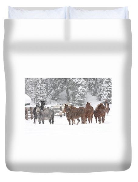 Cold Ponnies Duvet Cover