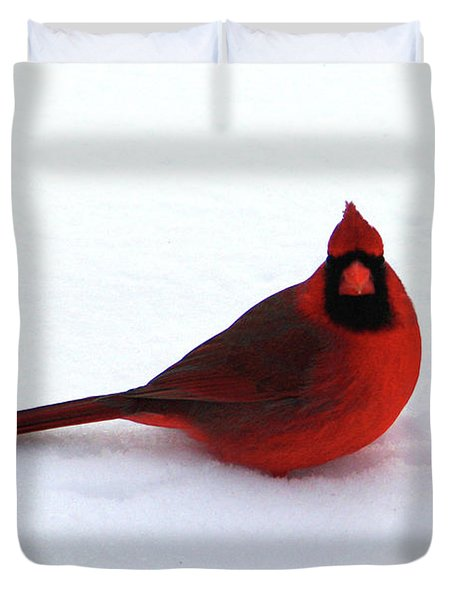 Duvet Cover featuring the photograph Cold Seat by Alyce Taylor