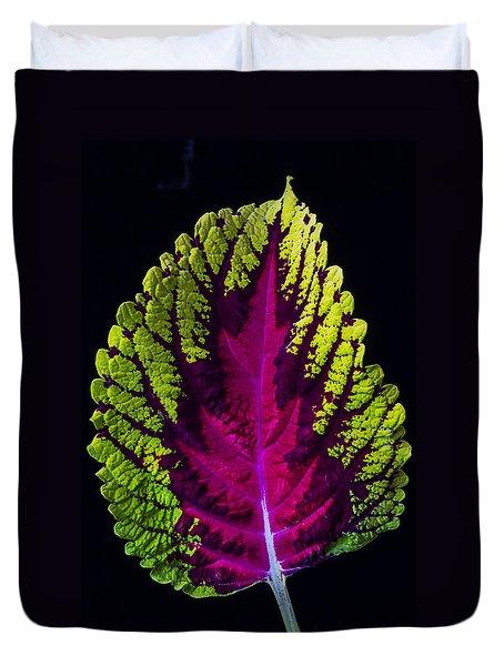 Coleus Leaf Duvet Cover by Garry Gay