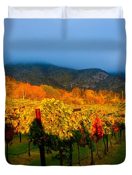Colibri Morning Duvet Cover