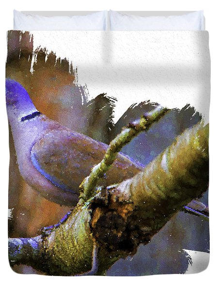 Collared Dove Duvet Cover by Ken Frischkorn