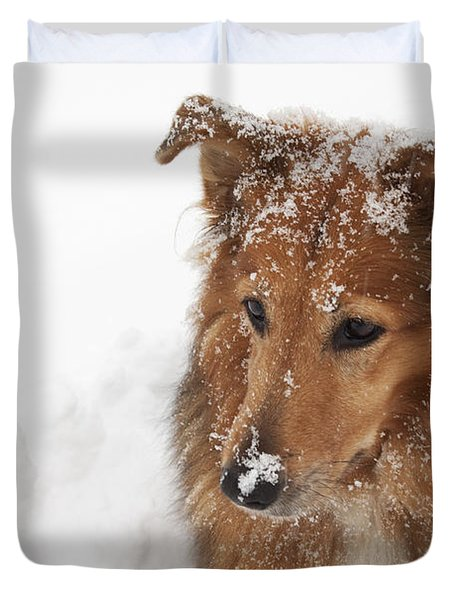 Collie In The Snow Duvet Cover