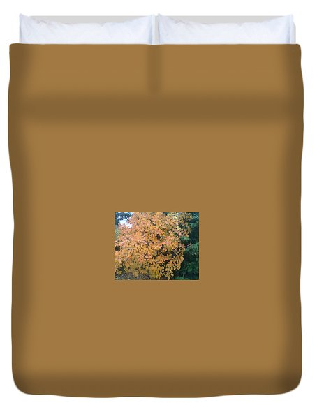 Color Surprise Duvet Cover